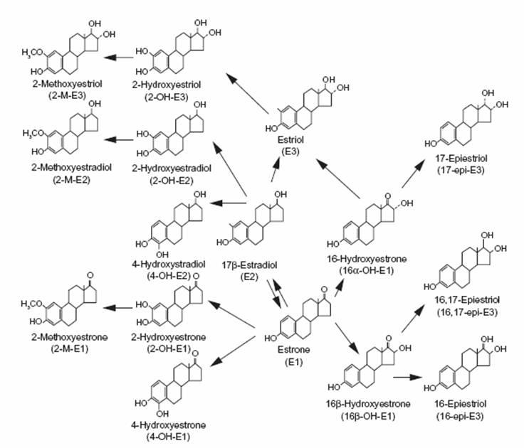 17-beta hydroxysteroid dehydrogenase 3 deficiency treatment
